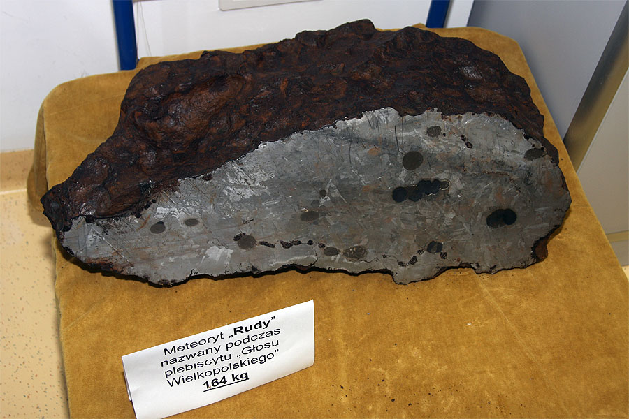 The meteorite 'Rudy' (credit Bernd Klemt).