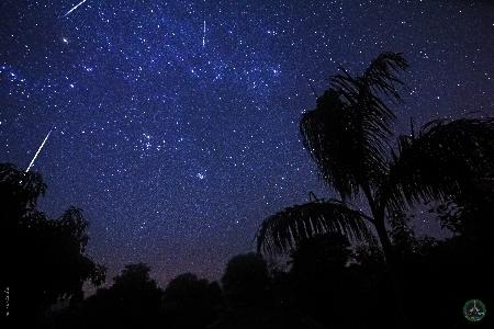 Geminids Meteor Shower 2017 uploaded by Neeraj Ladia